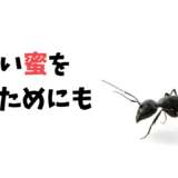 『働きアリの法則』